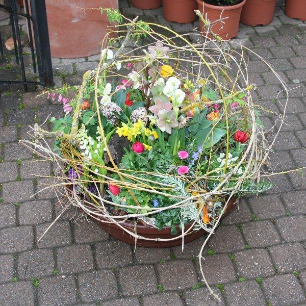 Frühling natürlich gestaltet Bild 1