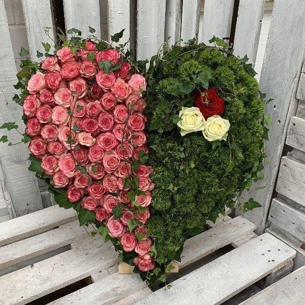 Herz 2 Bild 1