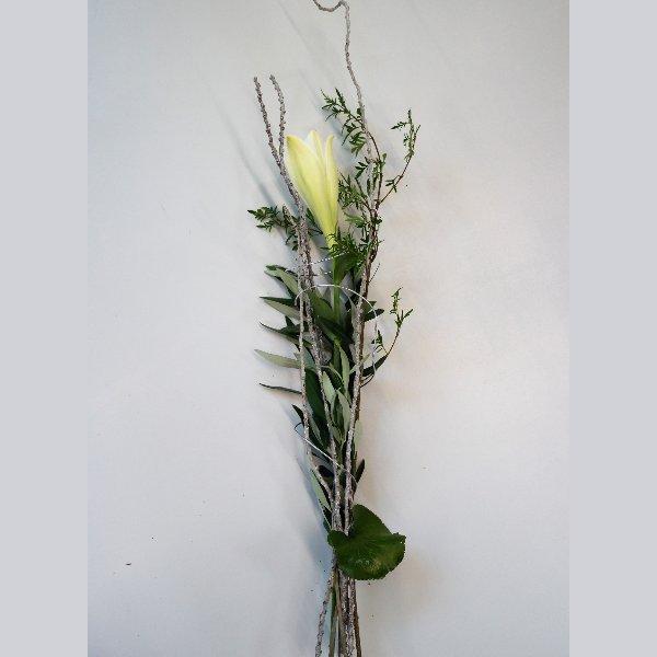 """""""Nur"""" eine Lilie Bild 1"""