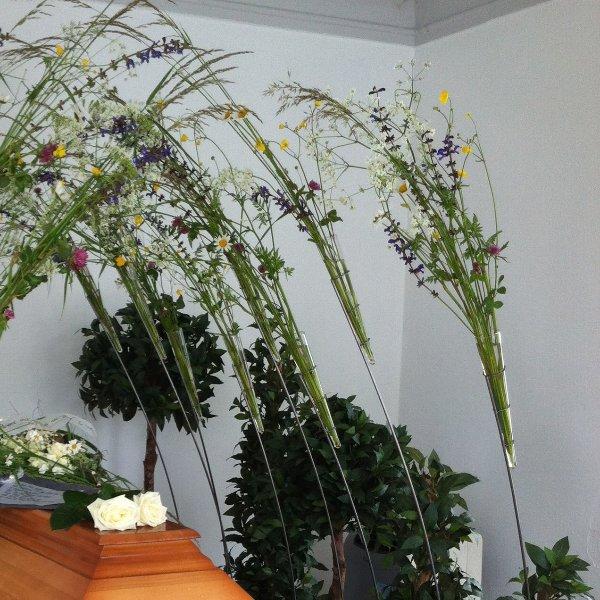 Schwebende Blüten Bild 1