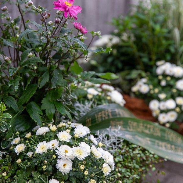 Trauerschalen saisonal bepflanzt Bild 2