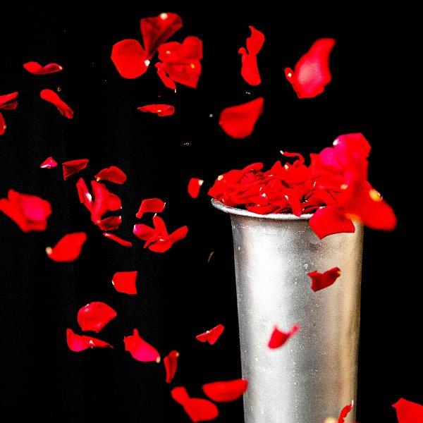 Streublüten zum Abschied Bild 2