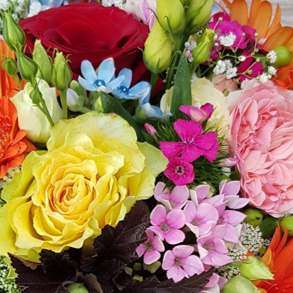 Blütenvielfalt Bild 2