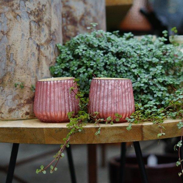 "Kerzenglas ""Lucyl"" rosé Bild 1"