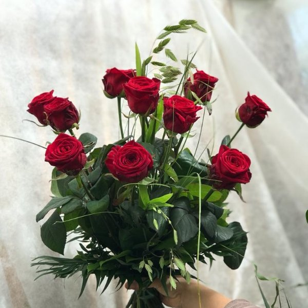 """Rote Rosen"" Bild 1"