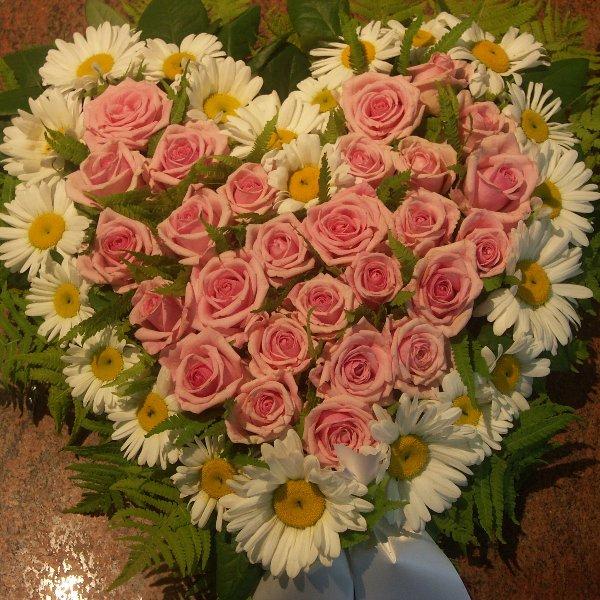 Herz Rosa weiß Bild 1