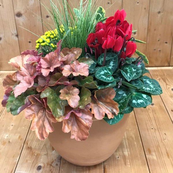 Bepflanzte Herbstschale Terracotta Bild 1