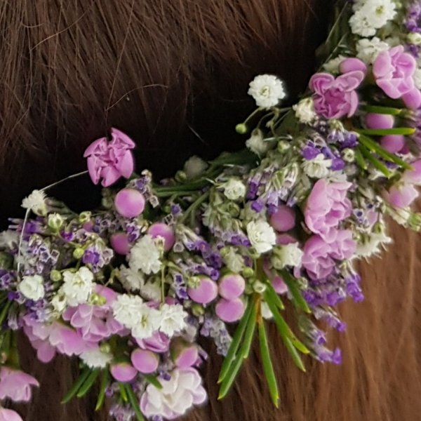 Kopfkranz Waxflower Bild 2