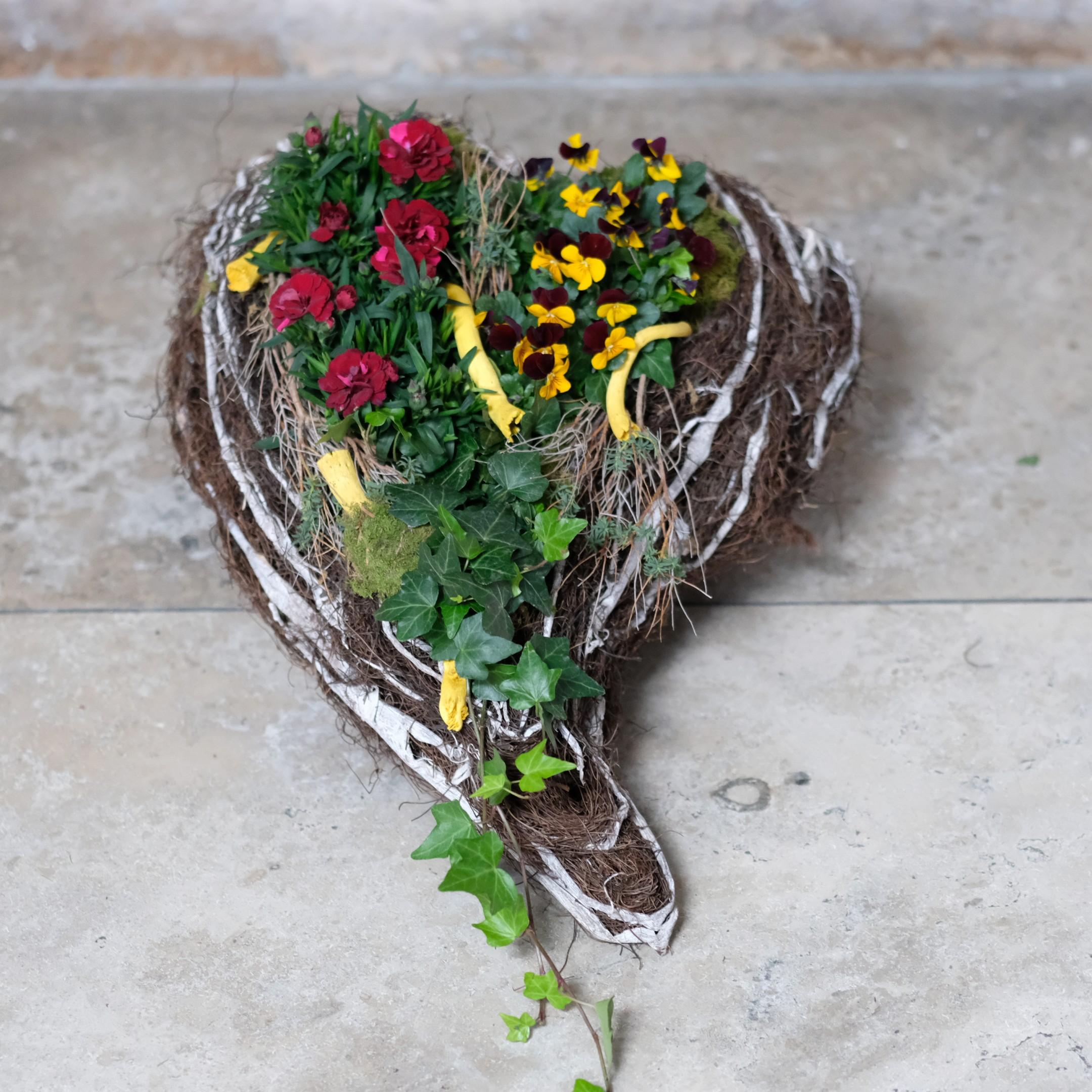 Bepflanztes Herz Bild 2
