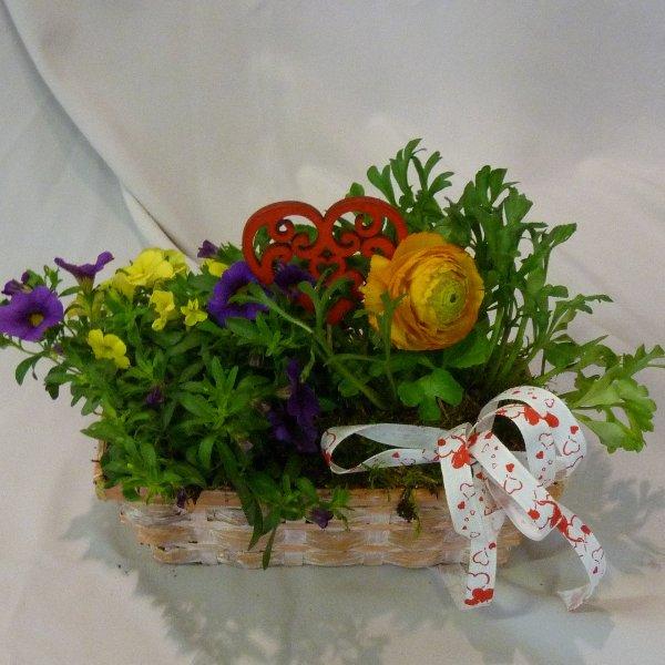 gepflanzter Korb bunt Bild 1