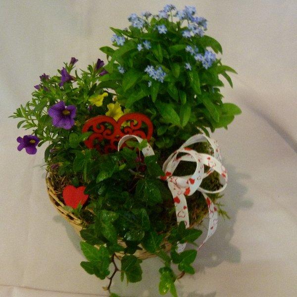 gepflanzter Korb bunt Bild 2