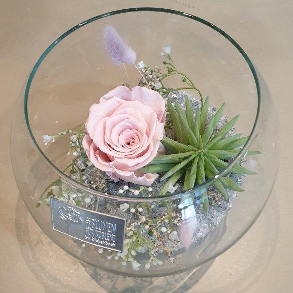 Stickstoffrose im Glas dekoriert Bild 1