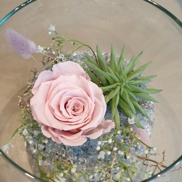 Stickstoffrose im Glas dekoriert Bild 2