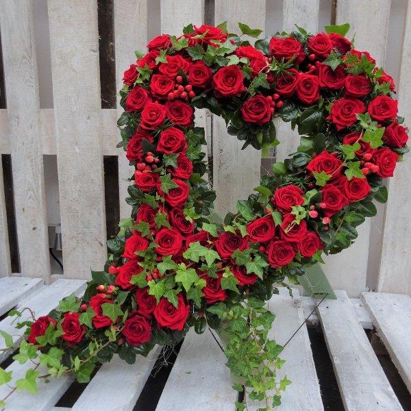 Herz 4 Bild 1