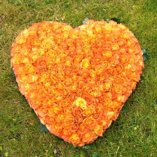 Kompacktes Herz Bild 1