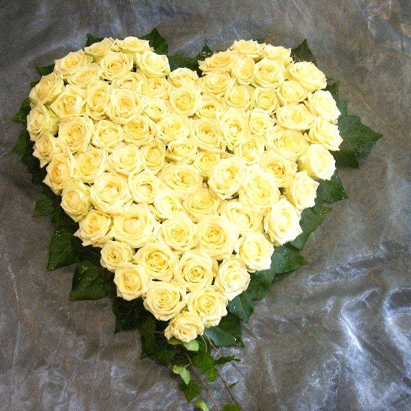 Kompacktes Herz Bild 2