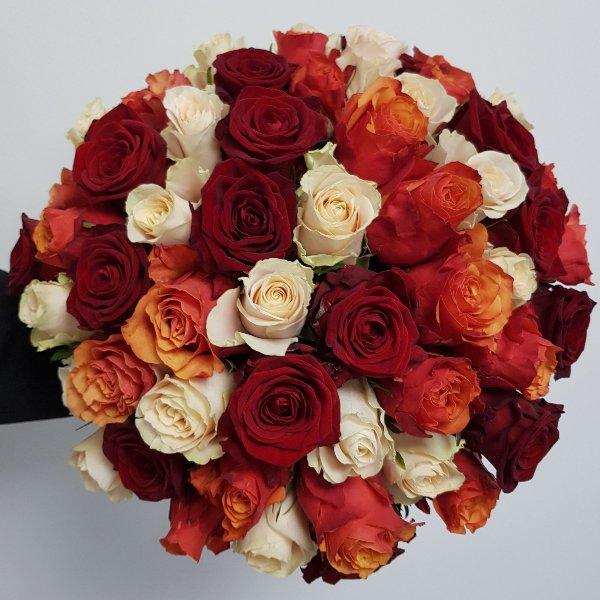 Rosen in Farben Bild 1