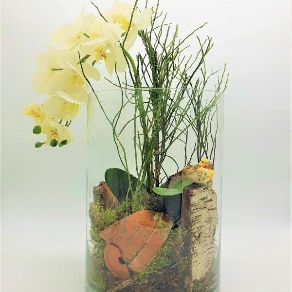 Glasvase mit einer Orchidee Bild 1