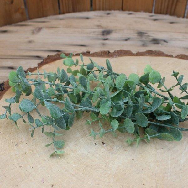 Eukalyptus die künstliche Alternative Bild 1