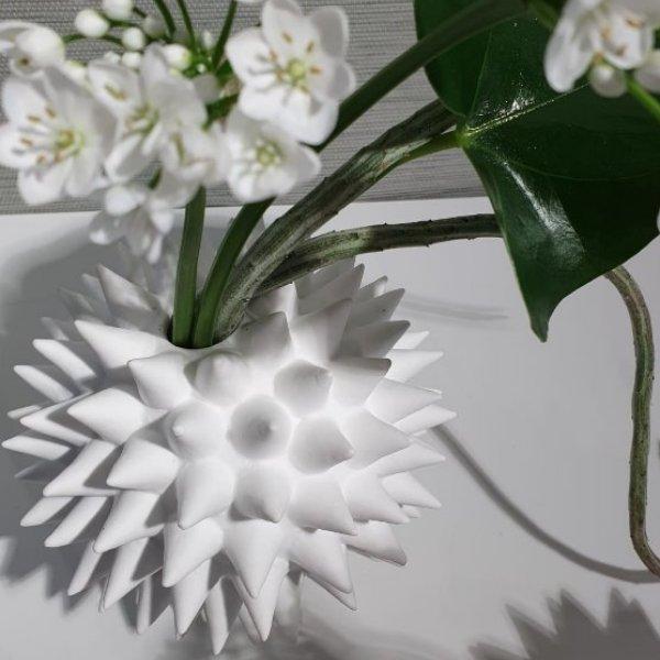 Vase aus Knochenporzellan mit Inhalt Bild 2