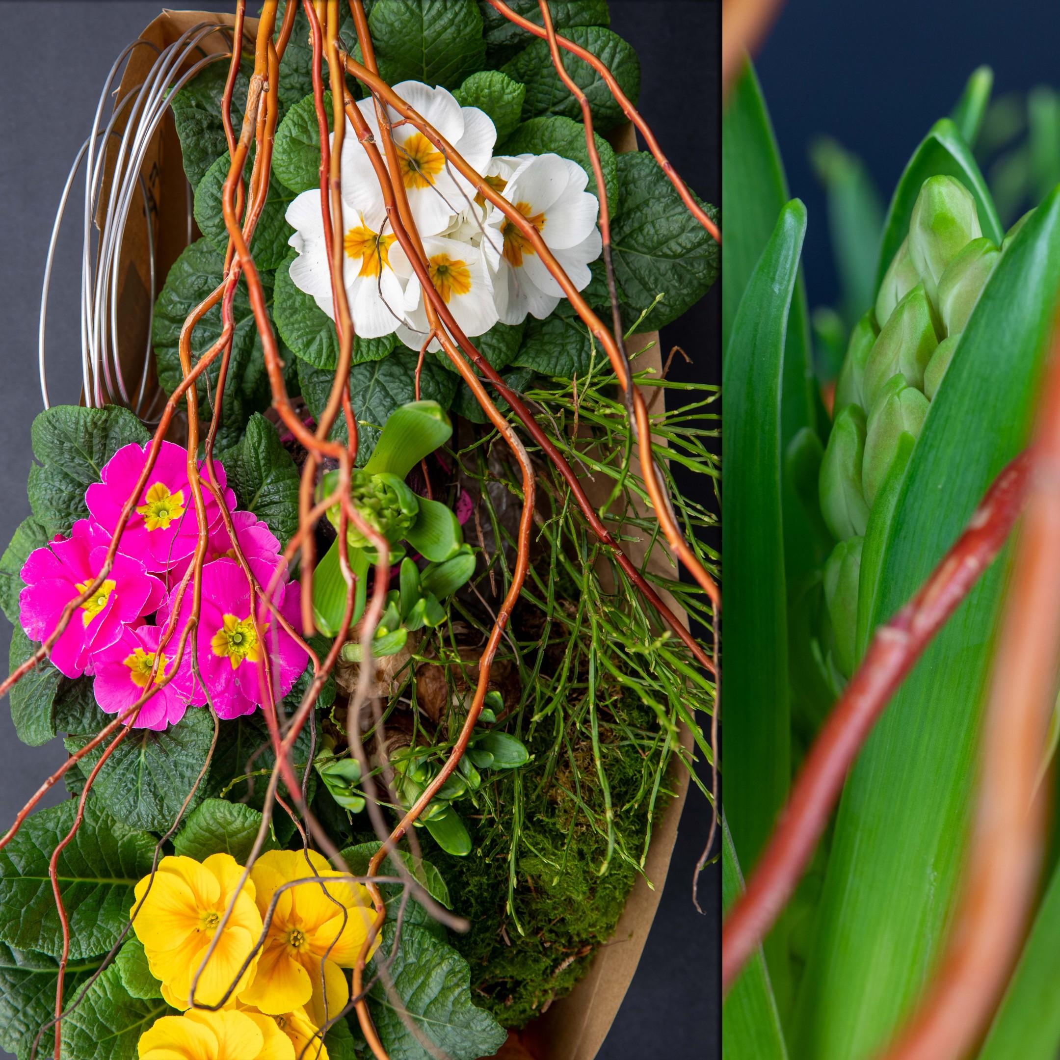 Der Blumenhandwerk Frühling für alle Bild 2