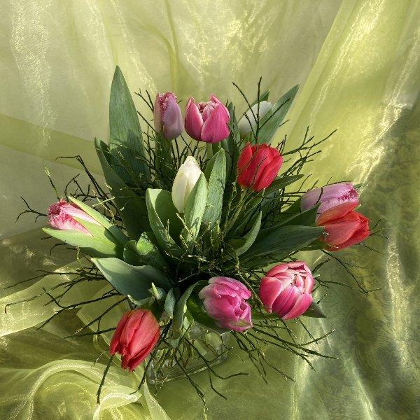 Tulpenstrauß Bild 1