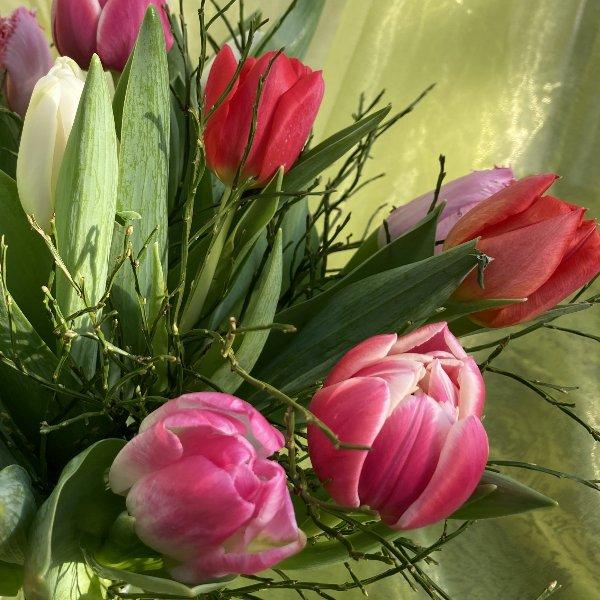 Tulpenstrauß Bild 2