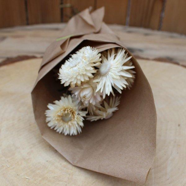"""Trockenblumen """"Stohblume"""" Bild 1"""