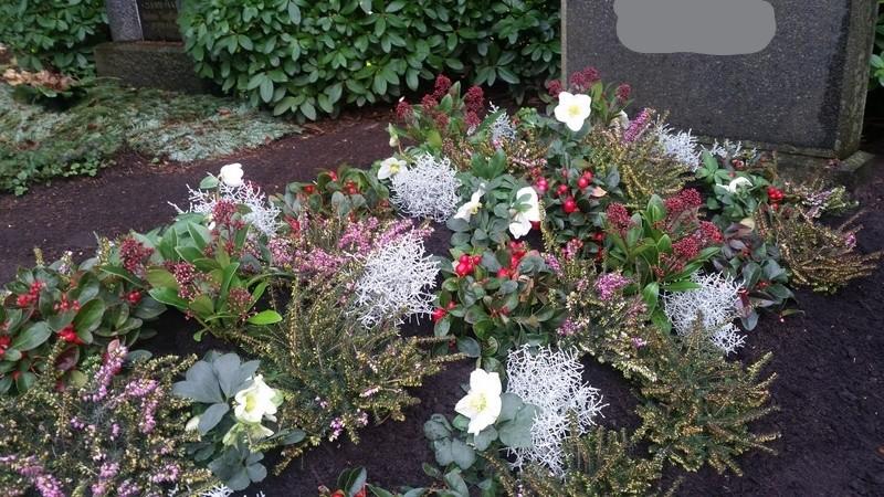 Hügelbepflanzung Winter Bild 4