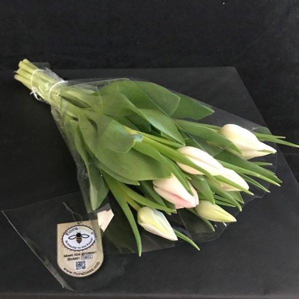 Tulpen 10er Bund Bild 1
