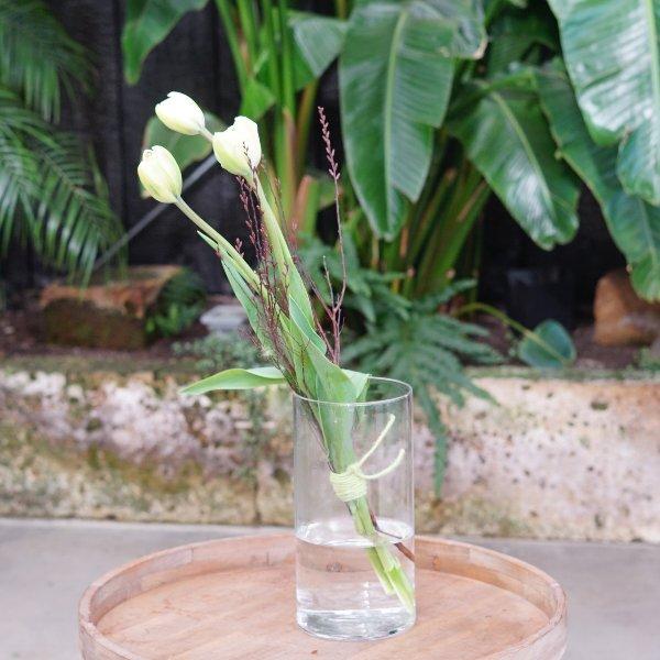Französische Tulpen Bild 2
