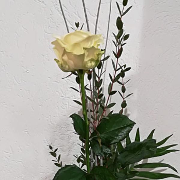 STR 12     Einzelne Rose mit Beiwerk Bild 2