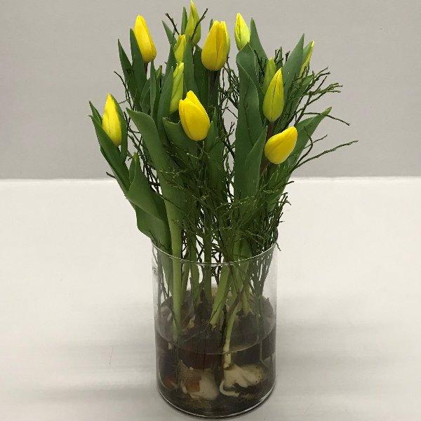 Stehender Tulpenstrauß mit Zwiebel im Glas in versch. Farben Bild 1