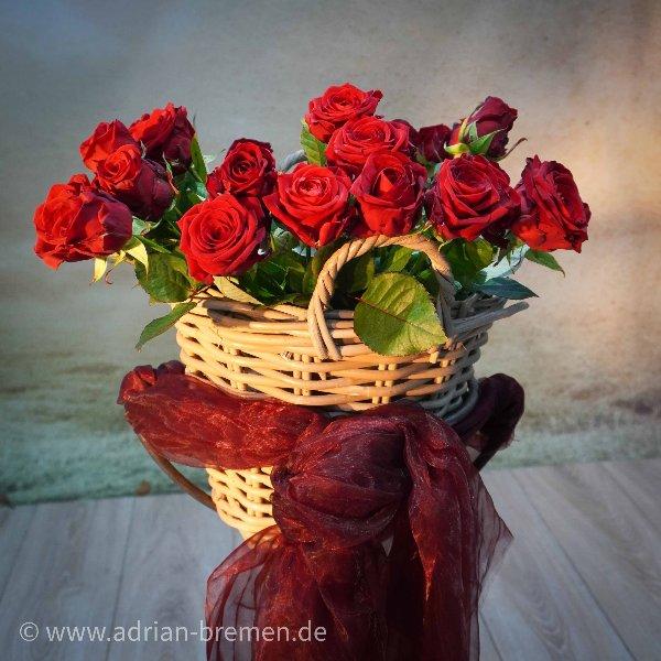 Rote Nachwurf-Rosen Bild 1