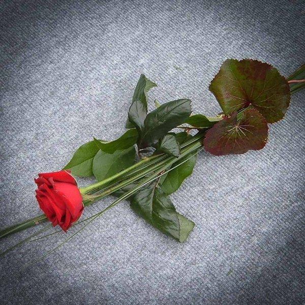 Einzel-Rosenstrauß Bild 1
