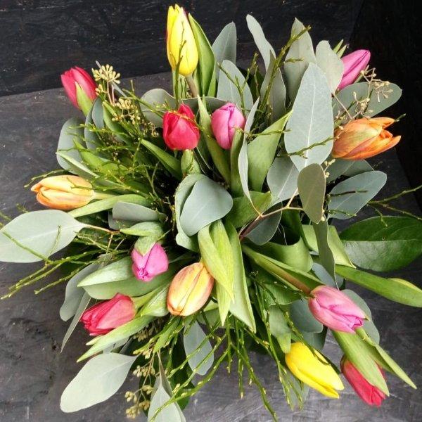 Tulpenstrauß bunt, mit Tulpen aus eigener Produktion Bild 1