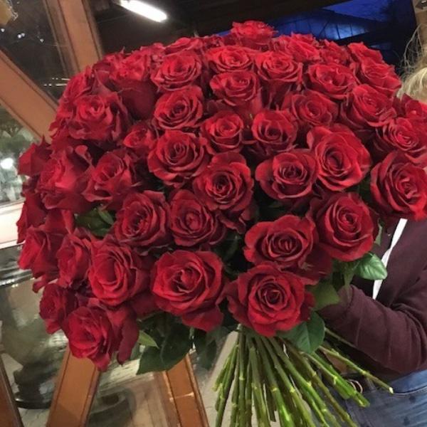 Rote Rosen mit Grün Bild 1