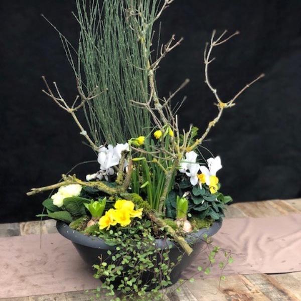 Pflanzschale gelb-weiß (Frühling) Bild 1