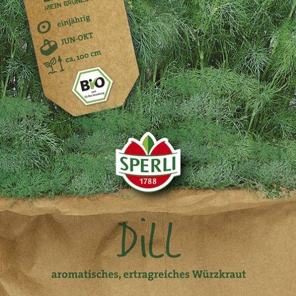 Dill Tetra-Dill Goldkrone - Bio-Saatgut Bild 1