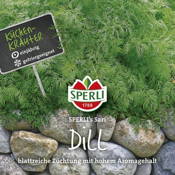 Dill SPERLI's Sari Bild 1