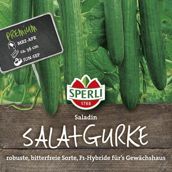 Salatgurke Saladin, F1 Bild 1