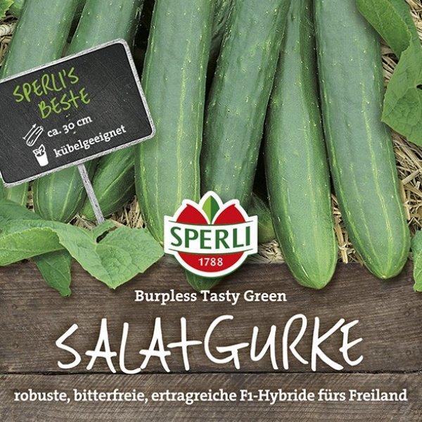 Salatgurke Burpless Tasty Green, F1 Bild 1