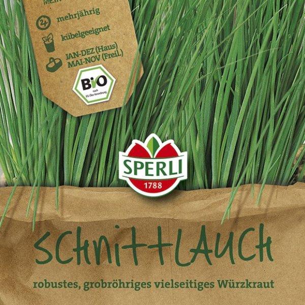 Schnittlauch Staro - Bio-Saatgut Sperli® - wächst Dir ans Herz Bild 1