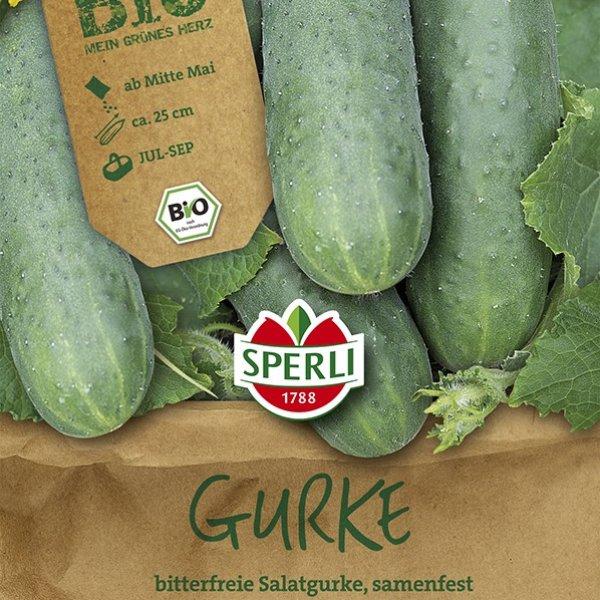 BIO Gurke Marketmore Bild 1