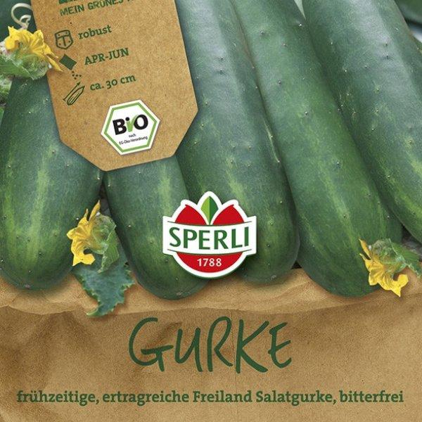Salatgurke - Bio-Saatgut Bild 1