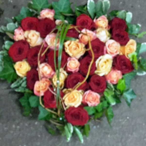 DB 1      Herz bunte Rosen Bild 1