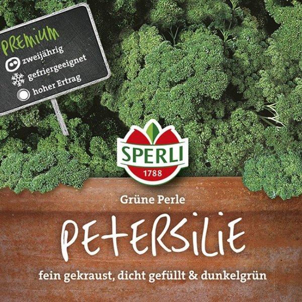 Petersilie Grüne Perle Bild 1