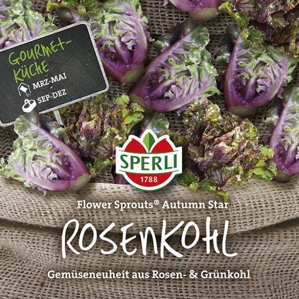 Rosenkohl Flower Sprouts® Autumn Star Bild 1
