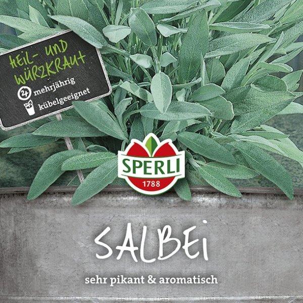 Salbei Sperli´s Allerlei Bild 1