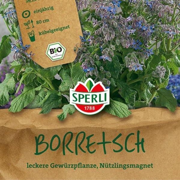 BIO Boretsch Bild 1